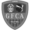 no title - source : vi_logo_gfca_volley.png